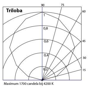 Triloba grafiek