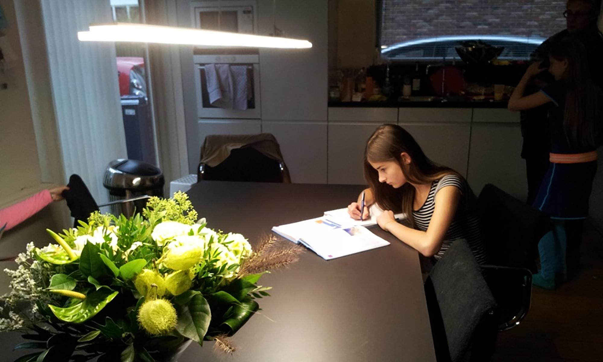 Student aan het werk bij Trilight LED armatuur